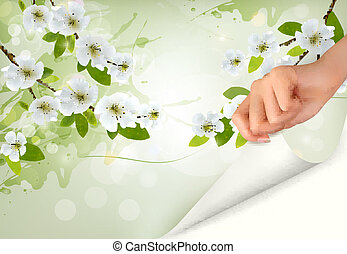Nature background with blossoming tree brunch and flowers and hand. Vector illustration.