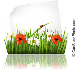Nature background with grass and a sheet of paper. Vector.