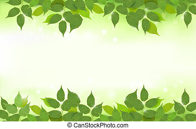 Nature background with green fresh leaves . Vector illustration.