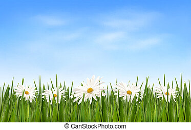 Nature background with green grass and flowers and blue sky. Vector