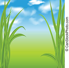 Nature background with green grass and sky