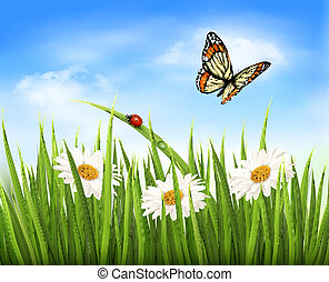 Nature background with green grass, flowers and a butterfly....