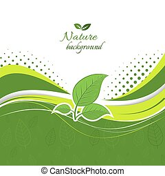 Nature background with green leaves.