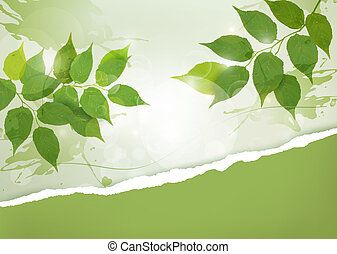 Nature background with green spring leaves and ripped paper....