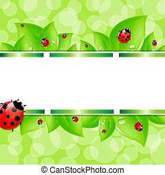 Nature Background With Ladybug And Ribbons, Vector...