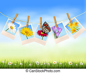 Nature background with photo with flowers and butterfly. Vector illustration.