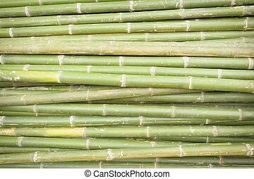 Nature bamboo background.