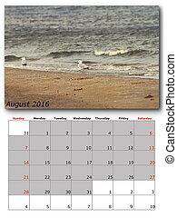 nature calendar august