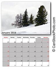 nature calendar january