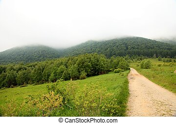 nature., camino, en, el, montañas., verano, paisaje.