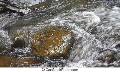 nature, chute eau, dans, profond, forêt