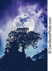 nature, ciel, sur, arbre, contre, arrière-plan., silhouettes, sea., tranquille