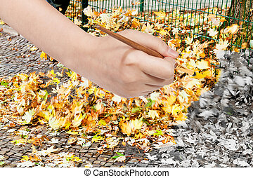 paintbrush paints fallen yellow leaves on street