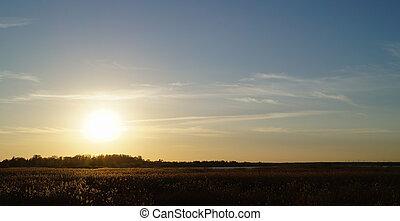 nature, coucher soleil, paysage, vue, à, les, champ