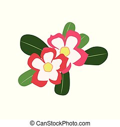 Nature flower desert rose impala lily, vector botanic garden...