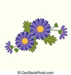Nature flower purple daisy