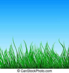 nature, fond, à, herbe verte, bleu, ciel