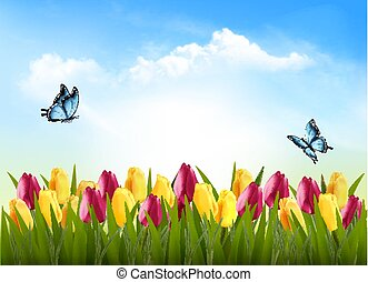 nature, fond, à, herbe verte, fleurs, et, a, butterfly., vector.