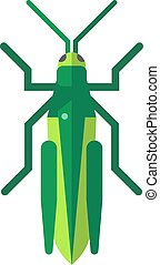 Cute grasshopper cartoon agricultural zoo large green locust nature insect flat vector.