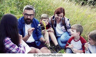 nature., groupe, enfants, école, champ, prof, voyage