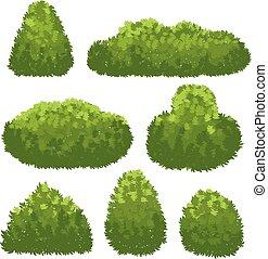 Nature hedge, garden green bushes. Cartoon shrub and bush vector set isolated on white background