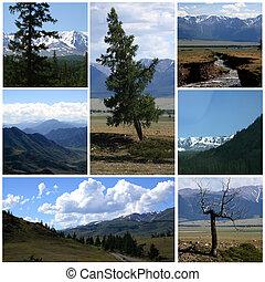 Nature landscape collage