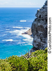 Nature landscape next to Cape town city, oceanscape with high cliff