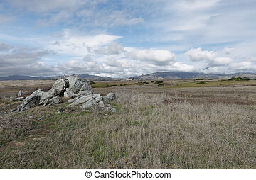 nature landscape of field with rock