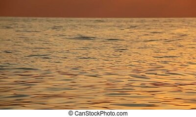 nature motion background, waving sea with sunset light