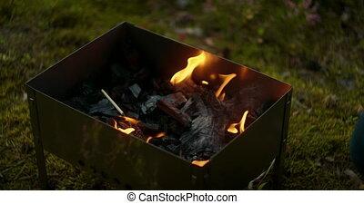 nature, mouvement, flamme, chargrill, brûlé, camping, lent, ...