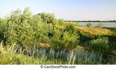 Nature of central Russia - forest steppe - Nature of a...