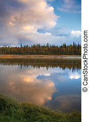 nature of Siberia and the Yamal