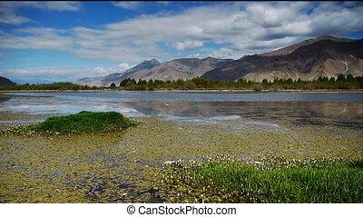 Nature of Tibet