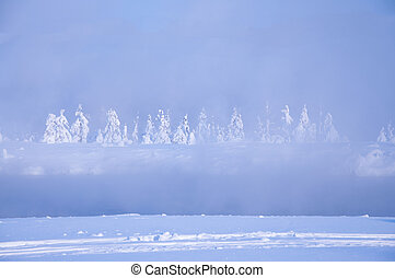 Nature of winter, steam over the river trees in the snow