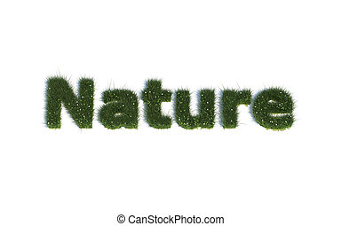 Nature out of realistic Grass