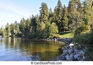 Nature park view