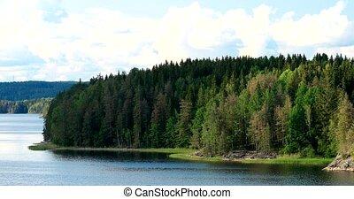 nature., pin, au-dessus, ombres, nuages, ou, été, ensoleillé, suédois, rivière, beau, day., en mouvement, arbres, lac