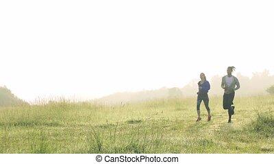 nature, pré, courant, dehors, brumeux, couple, jeune, ...