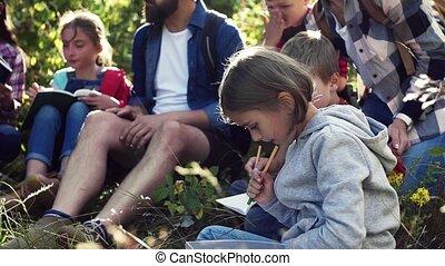 nature., prof, motion., groupe, enfants, lent, voyage champ, école