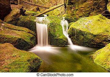 Nature rainforest river cascade. Stream in forest nature.