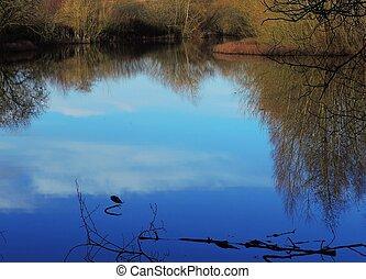 A peaceful lake scene photographed in Lancashire, England.