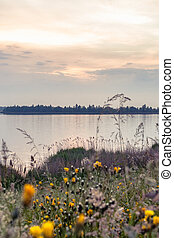 Nature reserve along the river IJssel - Sunset in Dutch...