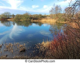 Nature reserve. - An image of a Nature reserve in Lancashire...