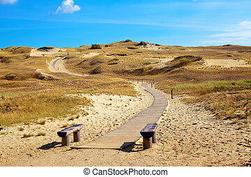 Curonian Spit, Lithuania - nature reserve with dried grass ...