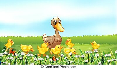 Nature scene background with ducklings in the field