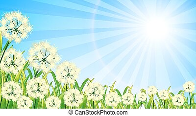 Nature scene background with flowers and bright sky