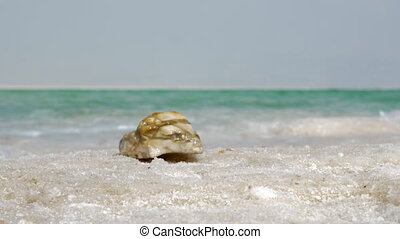 Nature scene with Dead Sea and its salt beach - Close-up...
