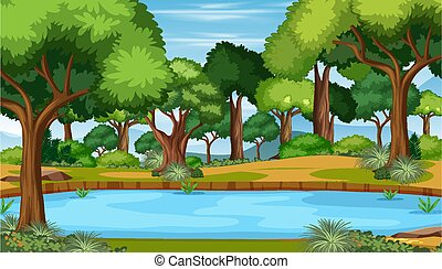 Nature scene with pond in the forest landscape