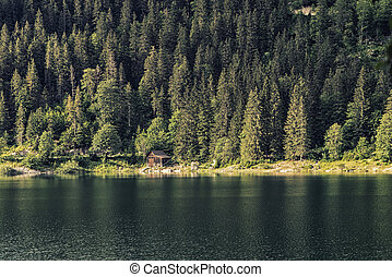 Nature scenery Gosausee, Austria