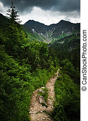 dramatic mountain landscape with distinctive green